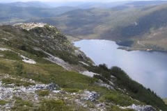 marions bushwalk cradle mountain