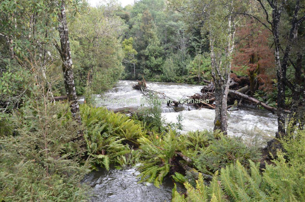meander falls walk