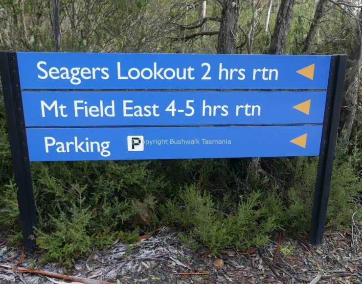 Seagers Lookout Mt Field