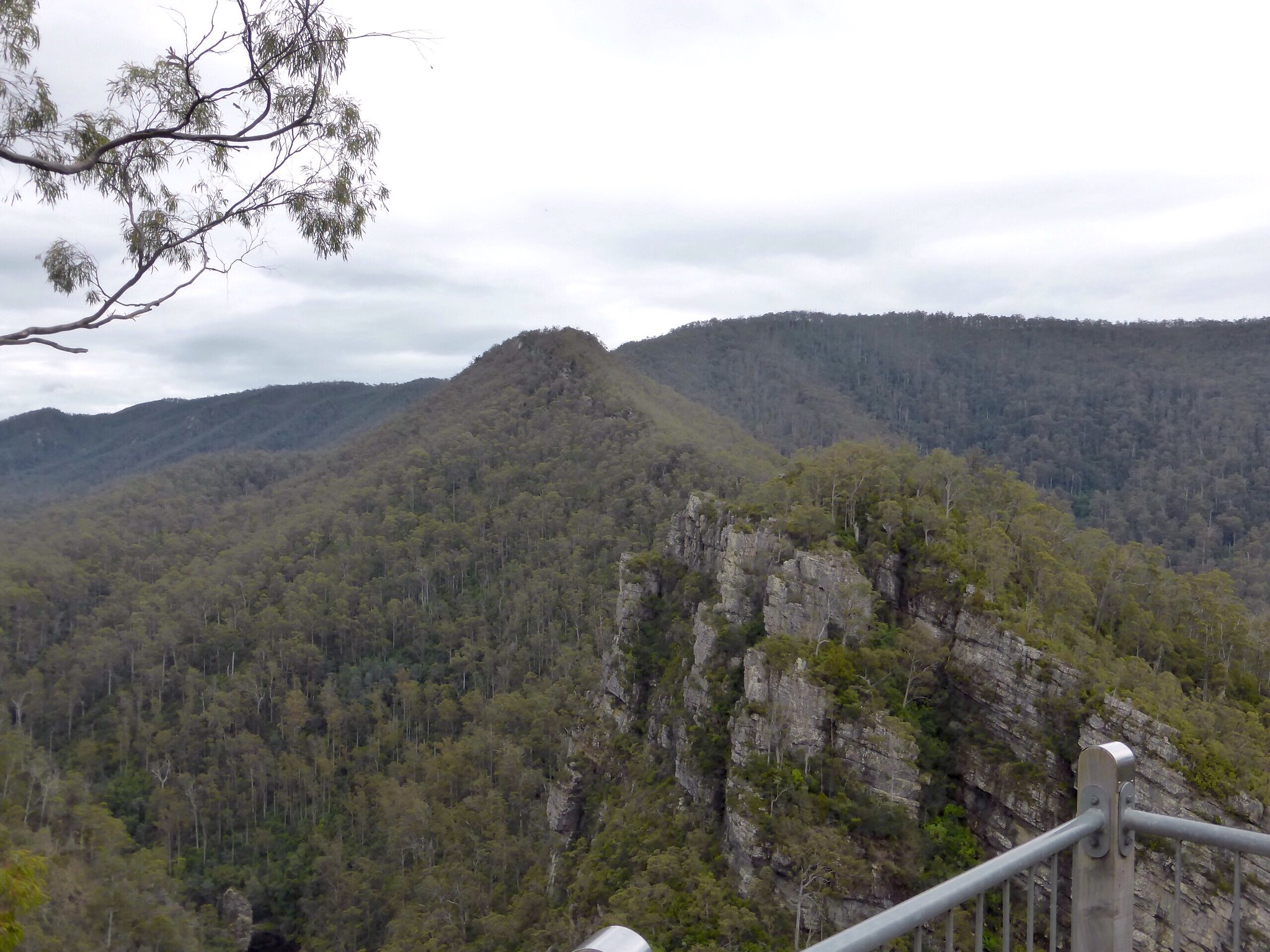 Alum Cliffs Bushwalk