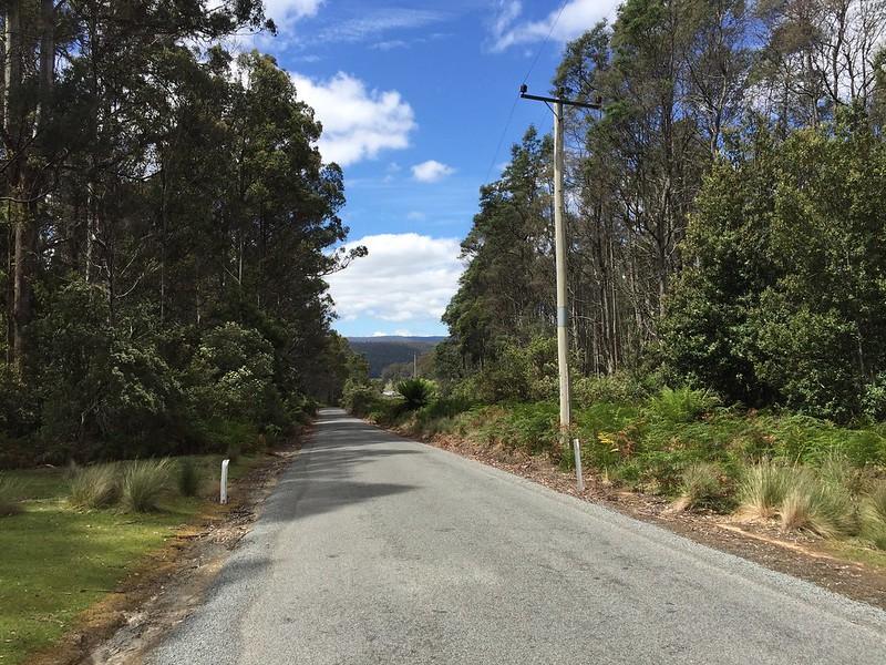 Fern Glade Reserve Walk Burnie